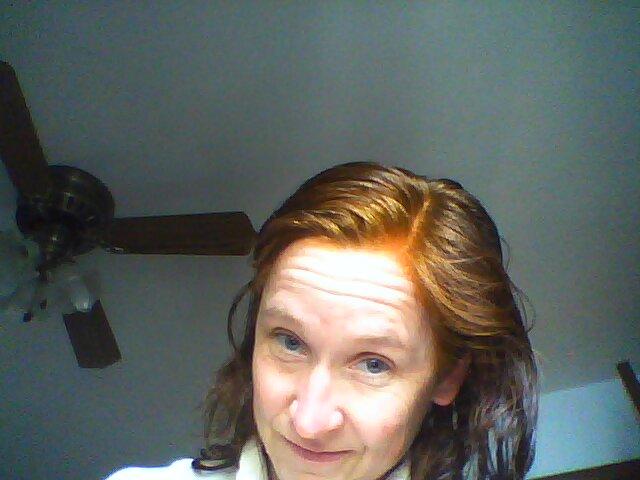 Dyeing Hair With Henna Part 2 Elizabeth Caulfield Felt