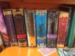 Angie Sage's Septimus Heap series (I must have loaned out book 2)